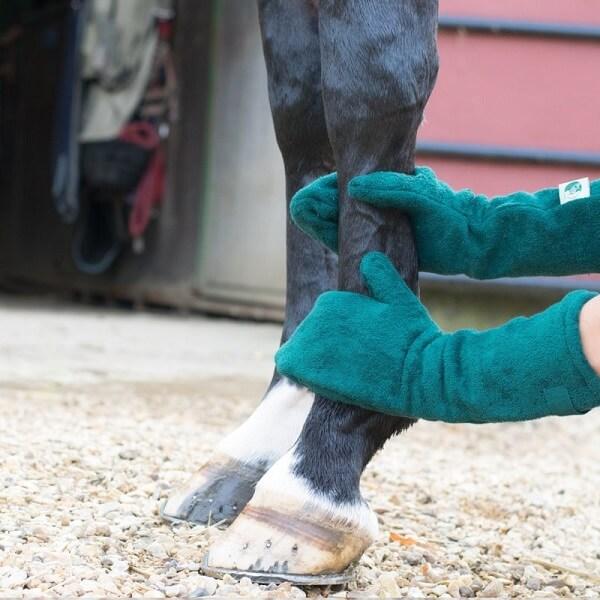 Nat paard afdrogen met drooghandschoen van Ruff and Tumble